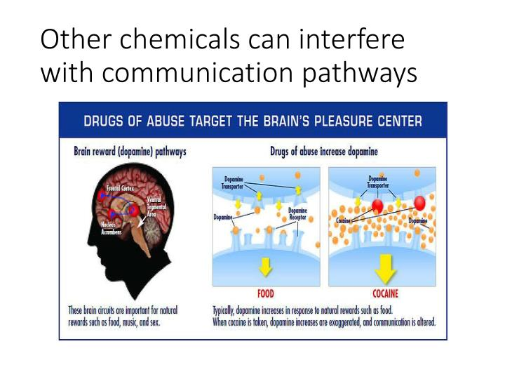 Other chemicals can interfere with communication pathways