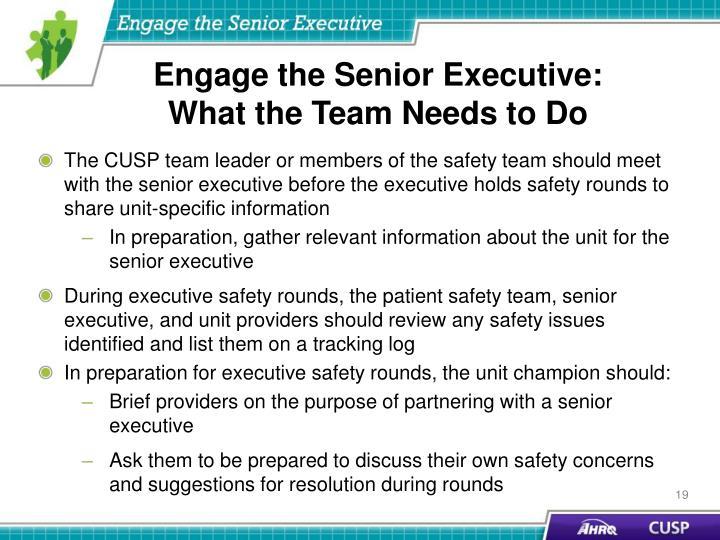 Engage the Senior Executive: