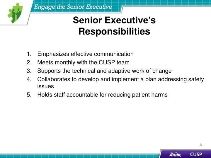 Senior Executive'