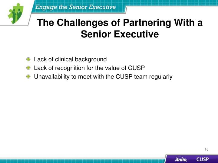 The Challenges of Partnering With a Senior Executive