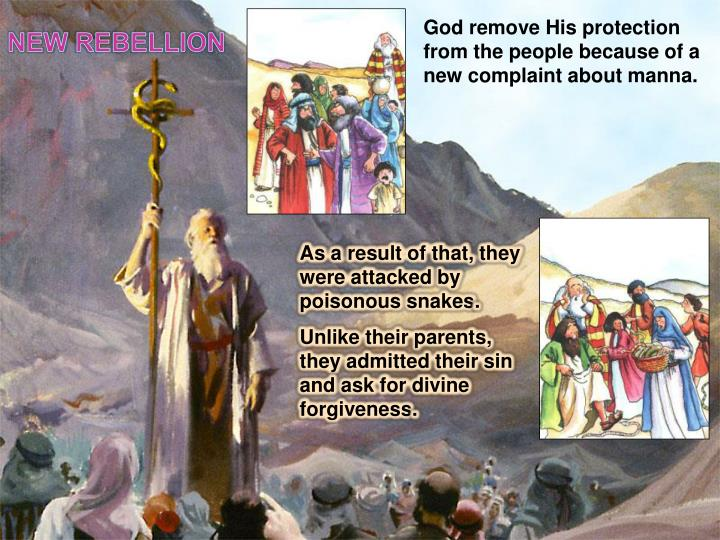 God remove His protection from the people because of a new complaint about manna.