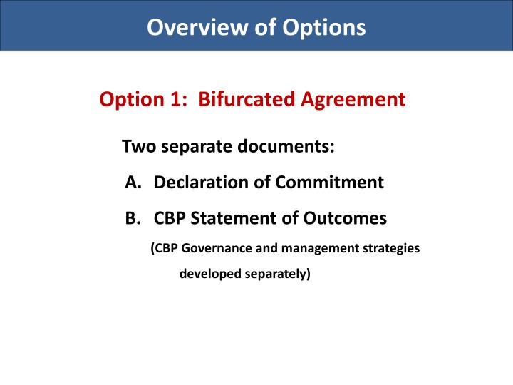 Overview of Options