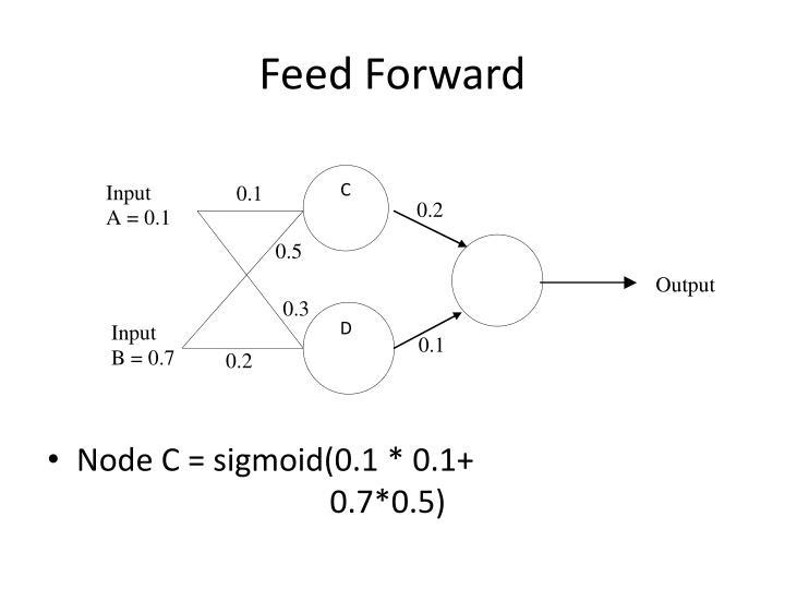 Feed forward1