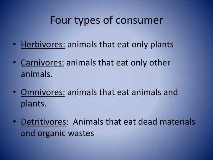 Four types of consumer