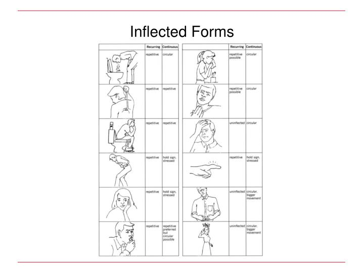 Inflected Forms