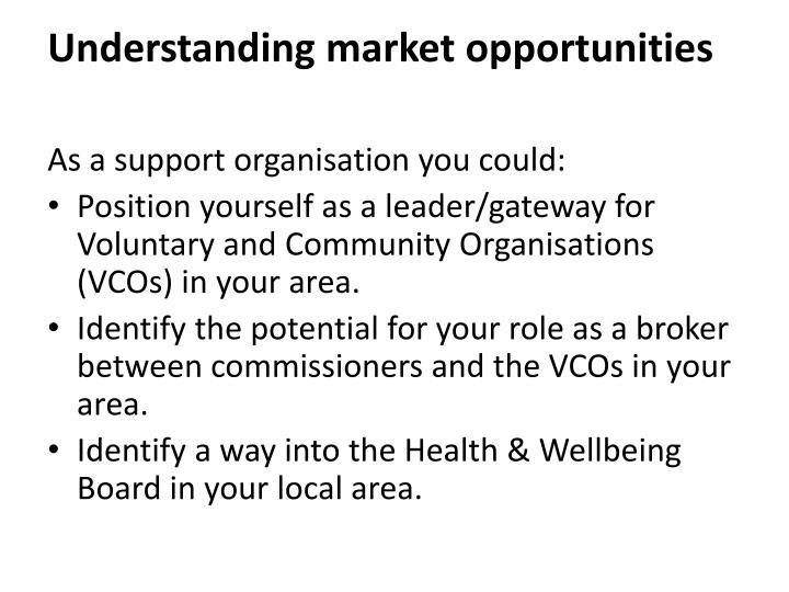 Understanding market opportunities
