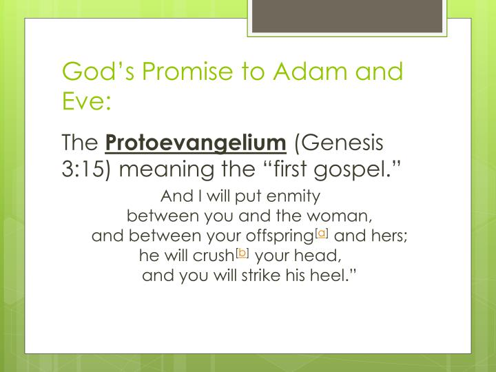 God's Promise to Adam and Eve: