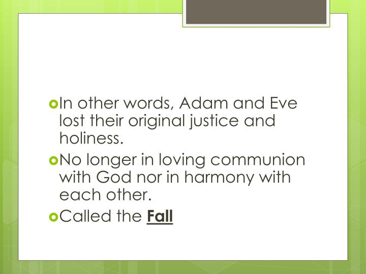 In other words, Adam and Eve lost their original justice and holiness.