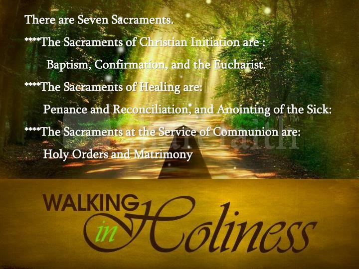There are Seven Sacraments.