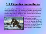 1 1 l ge des mammif res