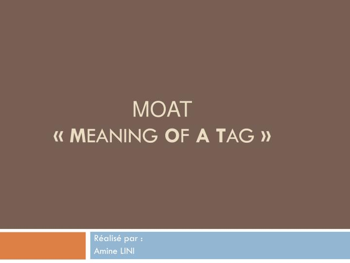 moat m eaning o f a t ag n.