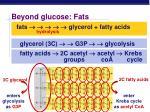 beyond glucose fats
