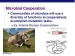 microbial cooperation