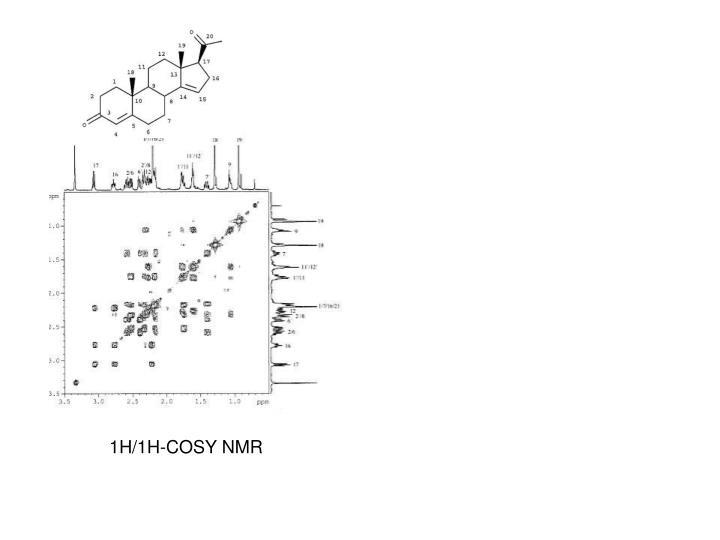 1H/1H-COSY NMR