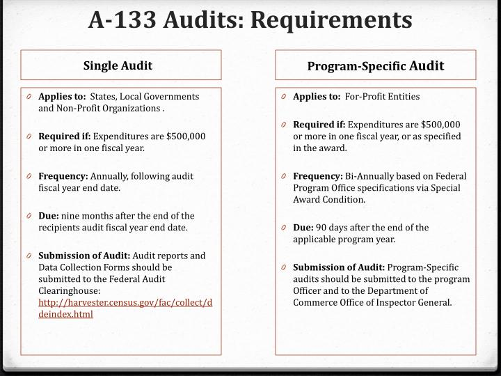 A 133 audits requirements