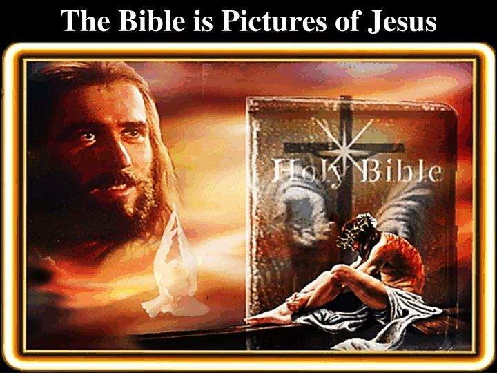The bible is pictures of jesus