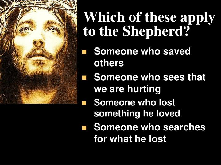 Which of these apply to the Shepherd?