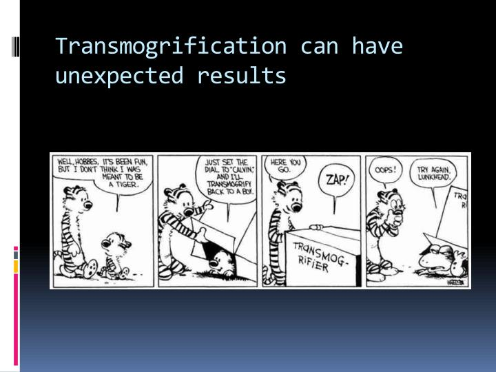 Transmogrification can have unexpected results