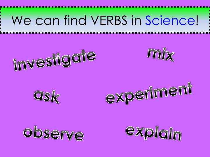 We can find VERBS in