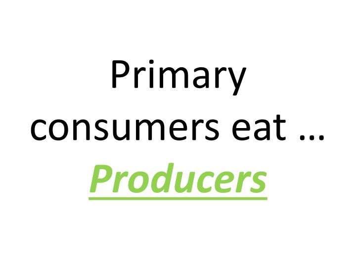 Primary consumers eat