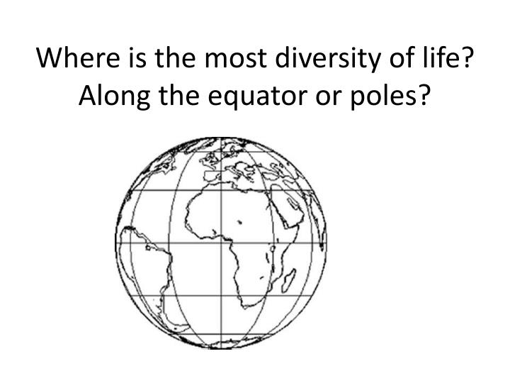 Where is the most diversity of life? Along the equator or poles?