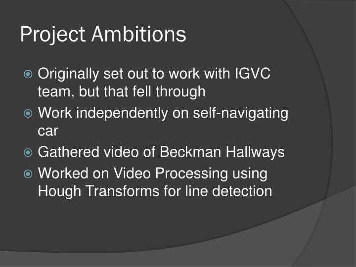 Project ambitions