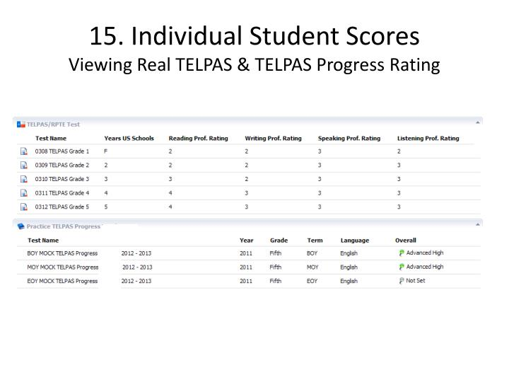 15. Individual Student Scores