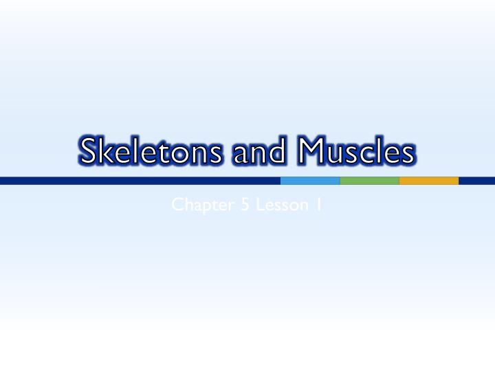 skeletons and muscles n.