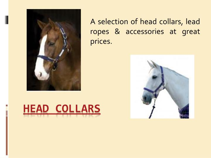 a selection of head collars lead ropes accessories at great prices n.