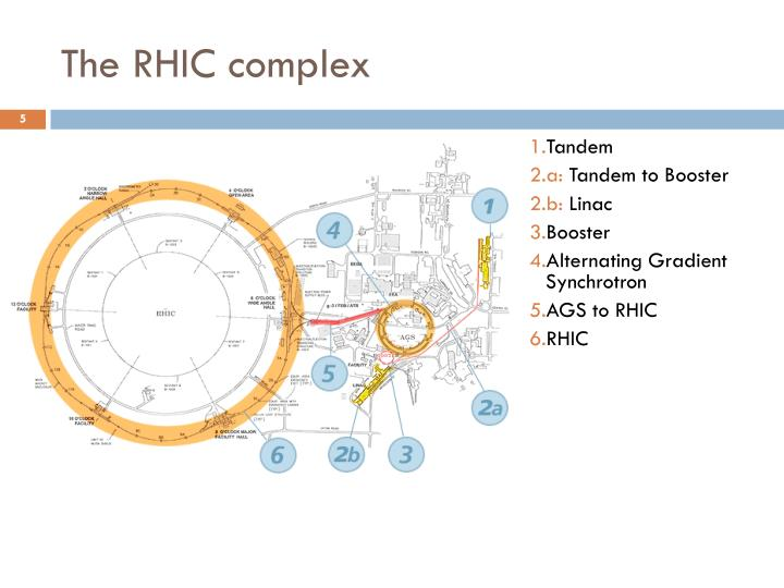 The RHIC complex