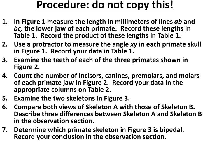 Procedure: do not copy this!