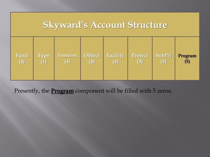 Skyward's Account Structure
