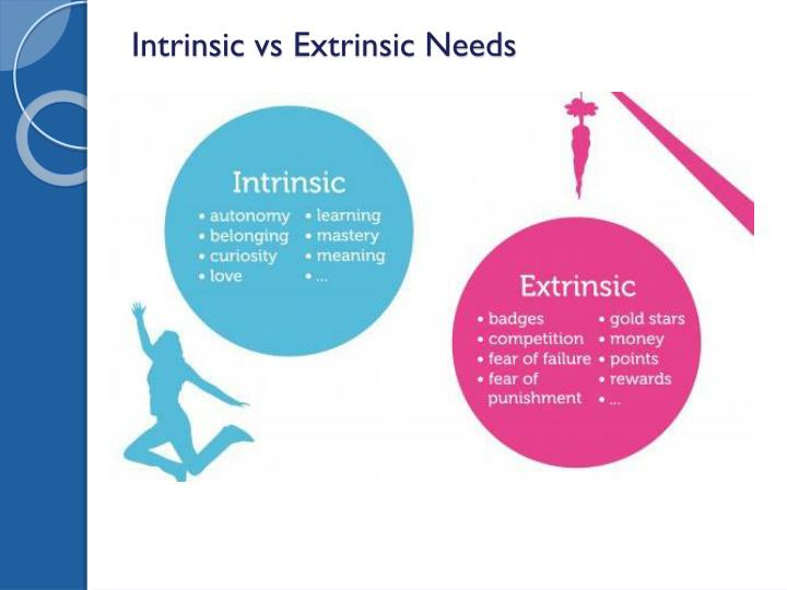 Intrinsic vs extrinsic needs