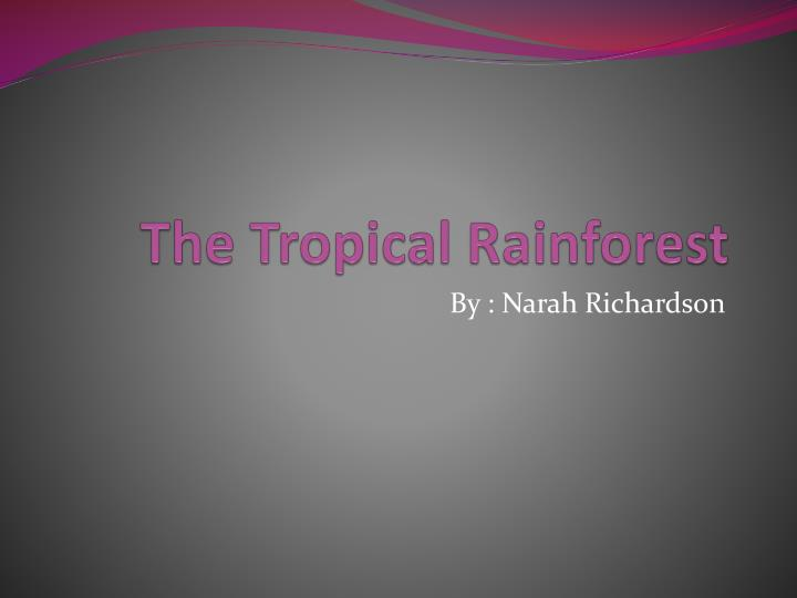 the t ropical r ainforest n.