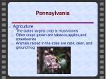 pennsylvania7