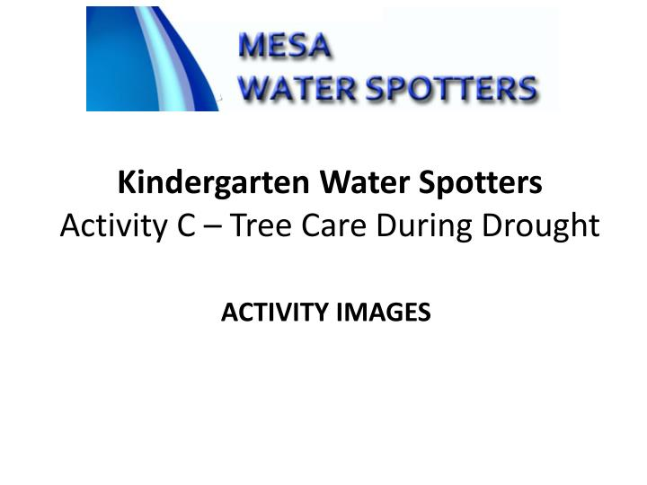kindergarten water spotters activity c tree care during drought n.
