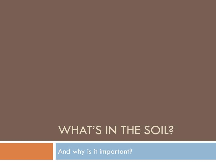 What s in the soil