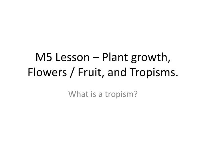 M5 Lesson – Plant growth, Flowers / Fruit, and Tropisms.