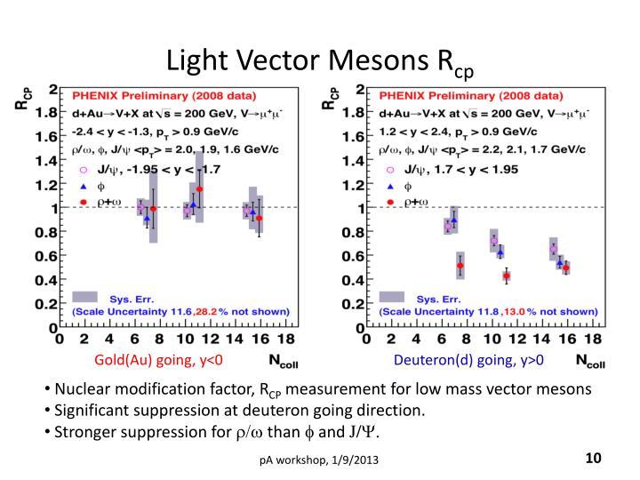 Light Vector Mesons