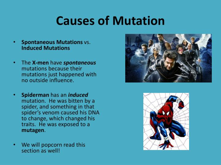 Causes of Mutation
