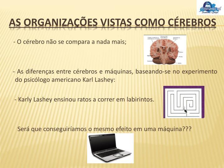 As organiza es vistas como c rebros