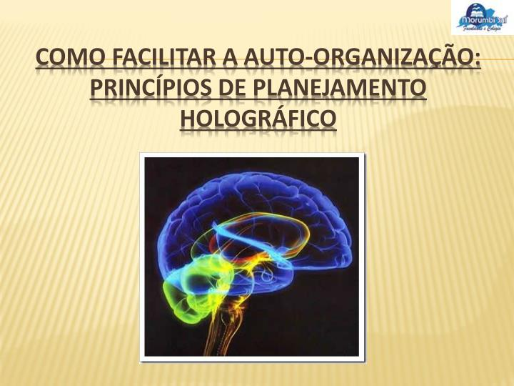 Como Facilitar a Auto-organização: princípios de planejamento holográfico