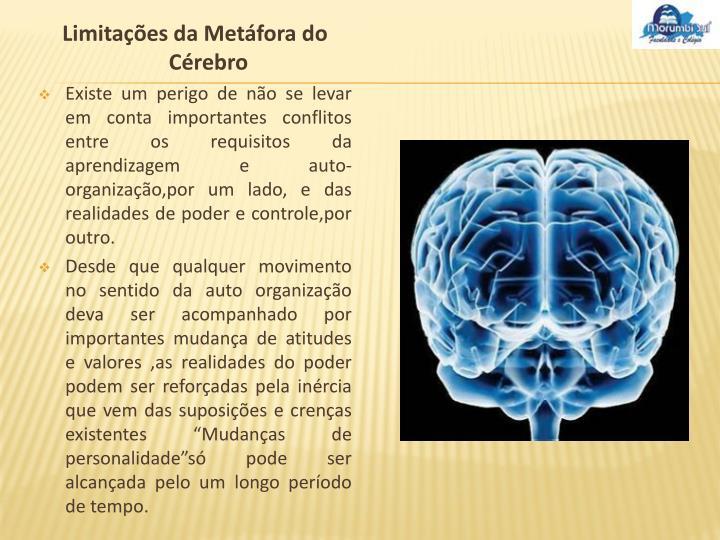 Limitações da Metáfora do Cérebro