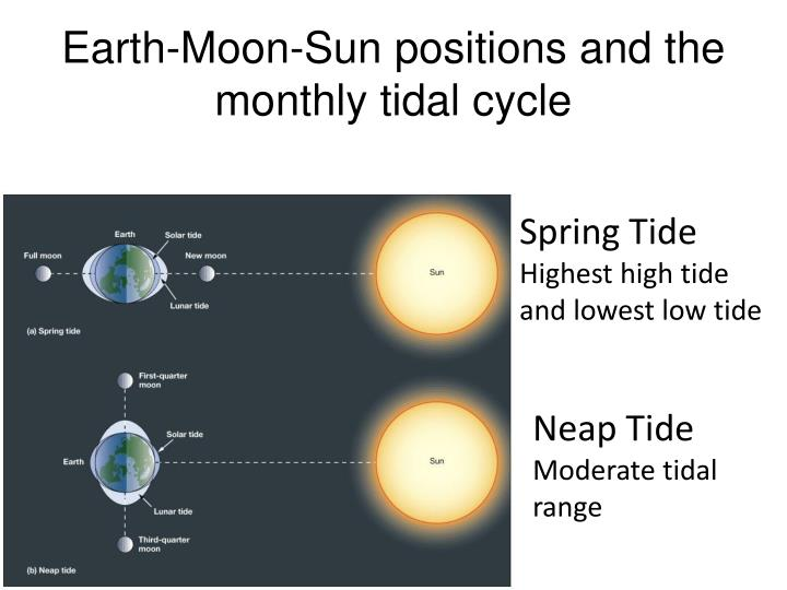 Earth-Moon-Sun positions and the monthly tidal cycle