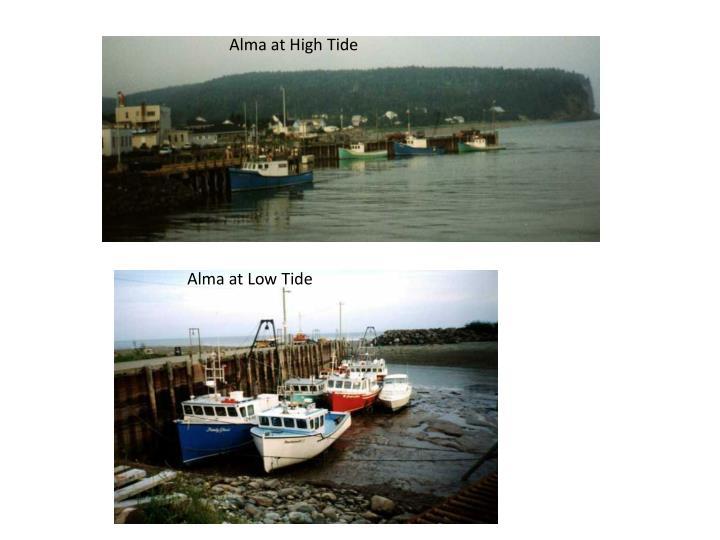 Alma at High Tide