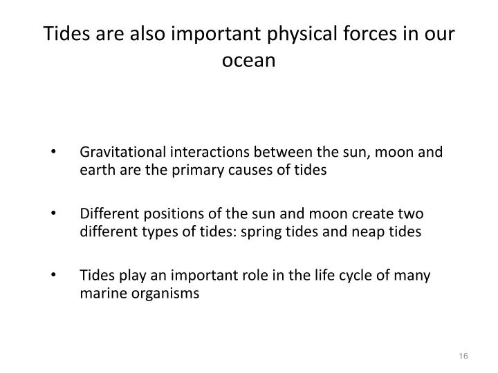 Tides are also important physical forces in our ocean