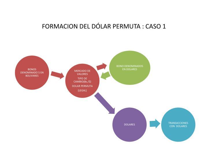 FORMACION DEL DÓLAR PERMUTA : CASO 1