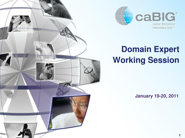domain expert working session n.