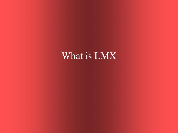 What is LMX