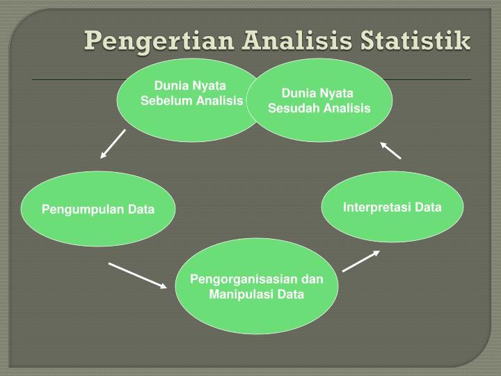 Pengertian analisis statistik